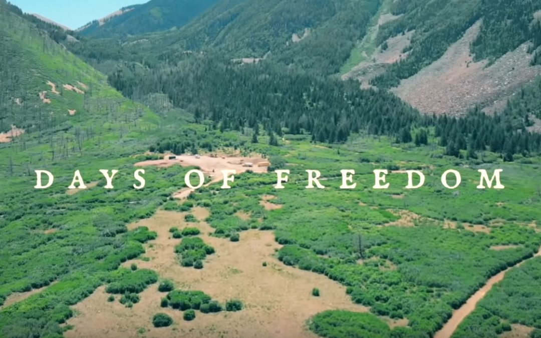 Days of Freedom – A Short Film